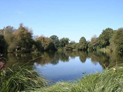 Karpervissen in Frankrijk met of zonder accommodatie. Kijk eens op onze site en stel gerust uw vragen. www.fransekarpers.nl