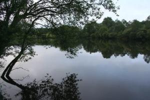 vissen bij etang cache