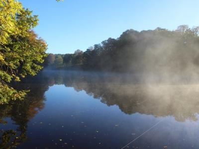 Huisje aan het water, vissen met accommodatie, karpervissen vanuit huisje, vissen met huisje
